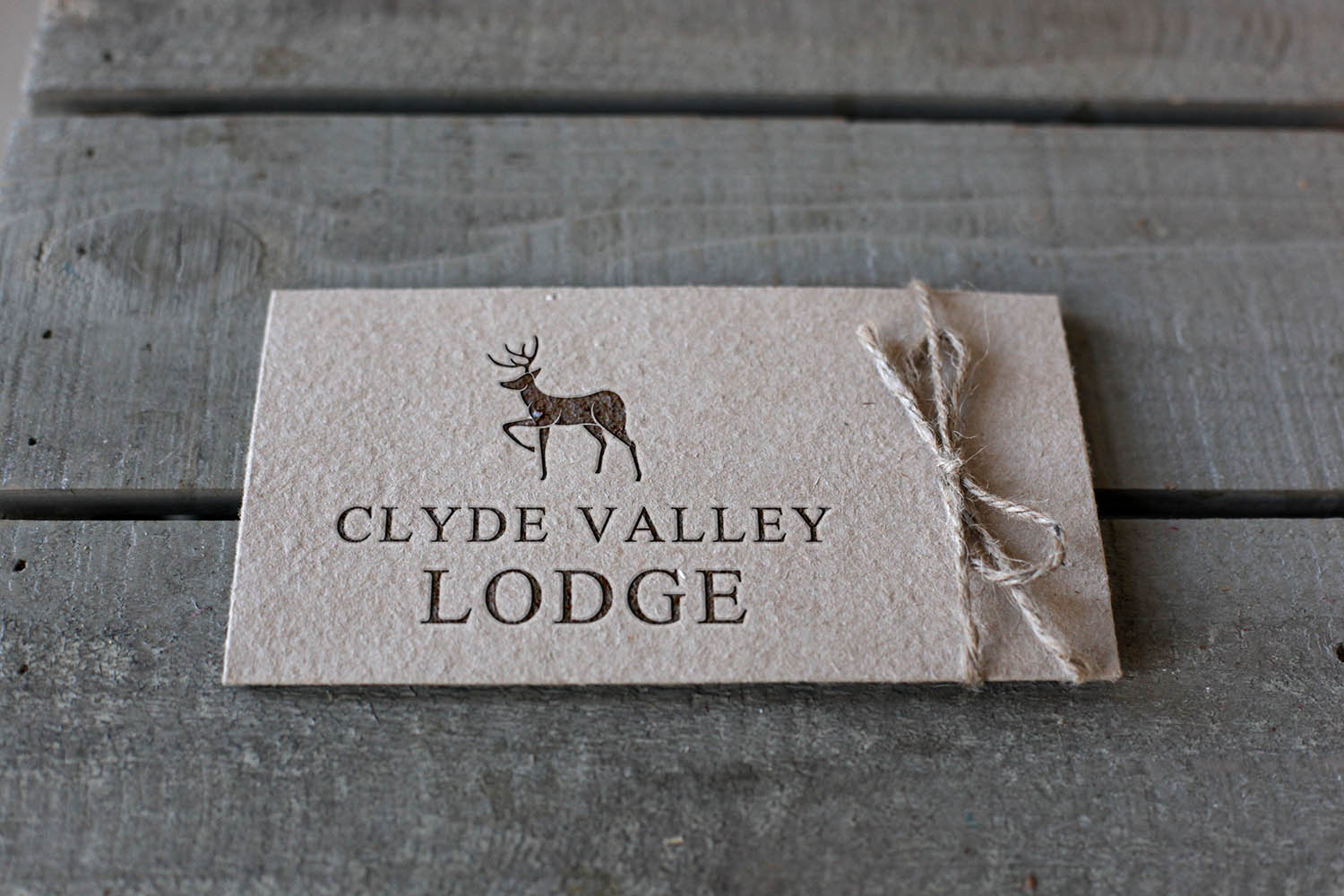 Clyde Valley Lodge Hotel Logo Design Branding Print Signage Case Study by Fearless Creative