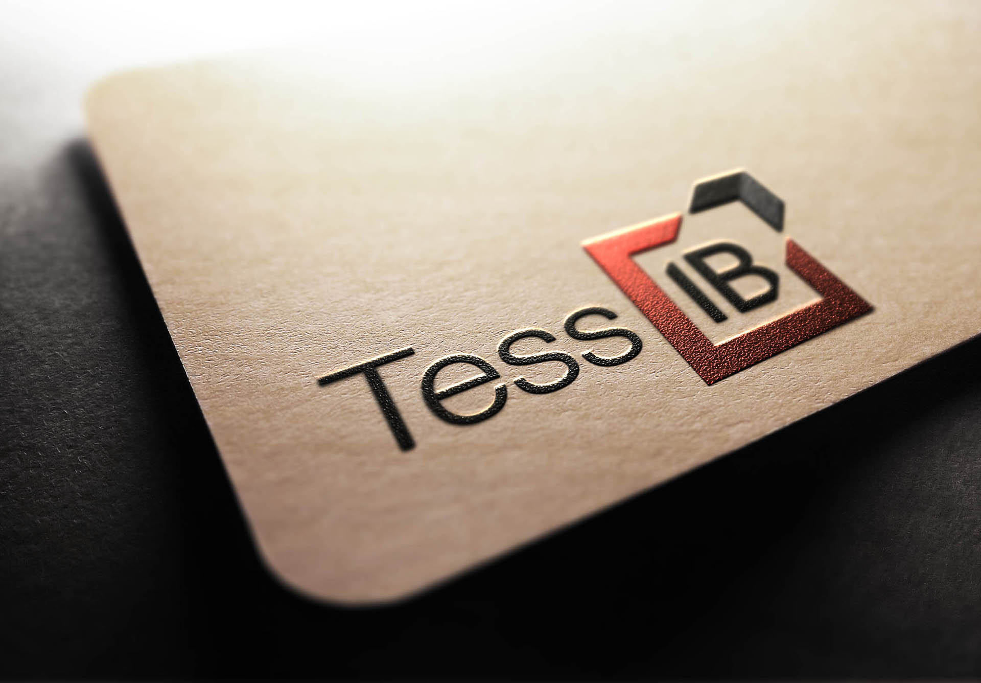 TessIB Case Study Fearless Creative Branding & Business Website Design